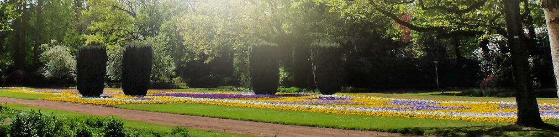 Botanischer Garten In